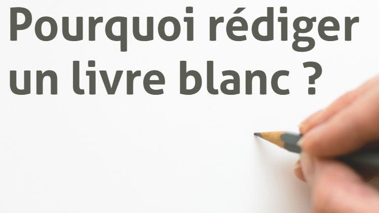 Définition et rédaction d'un livre blanc